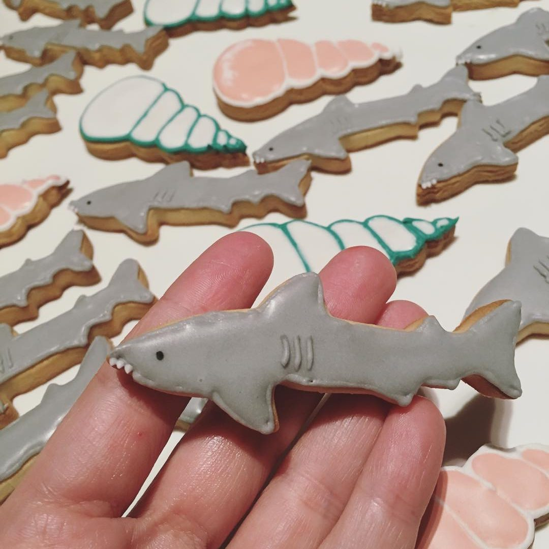 shark_cookie
